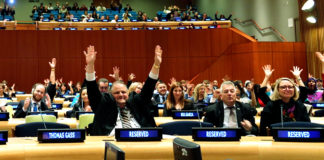 Autismo ONU